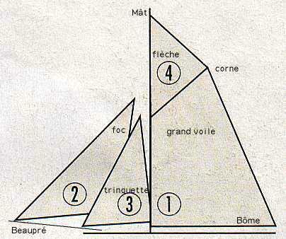 Le Renard échelle 1/50 kit Artesania Latina - Page 12 Voilure_cotre_aurique